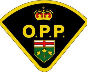 opp-logo (1)