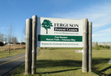 Ferguson Forest Centre