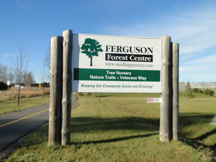 Ferguson Forest Centre