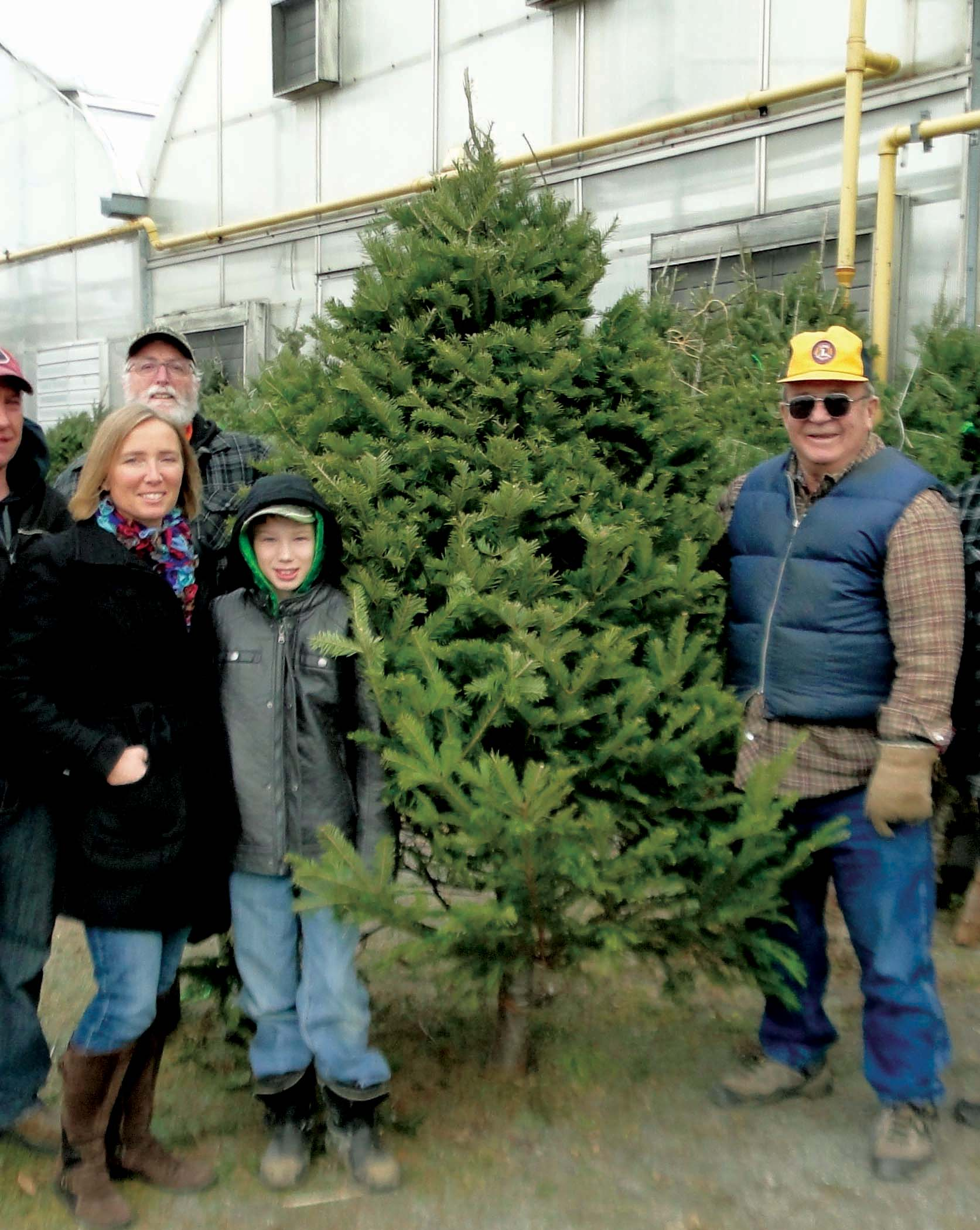 Where Did Christmas Trees Originate.Lions Christmas Tree Sales Begin The North Grenville Times