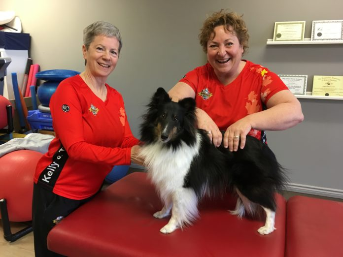 Kemptville Physiotherapy Centre