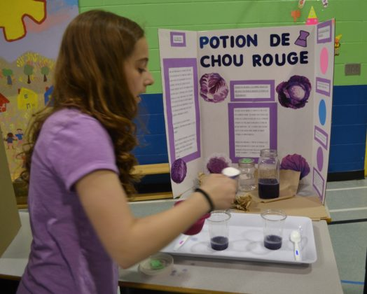 Science Fair at Sainte-Marguerite-Bourgeoys